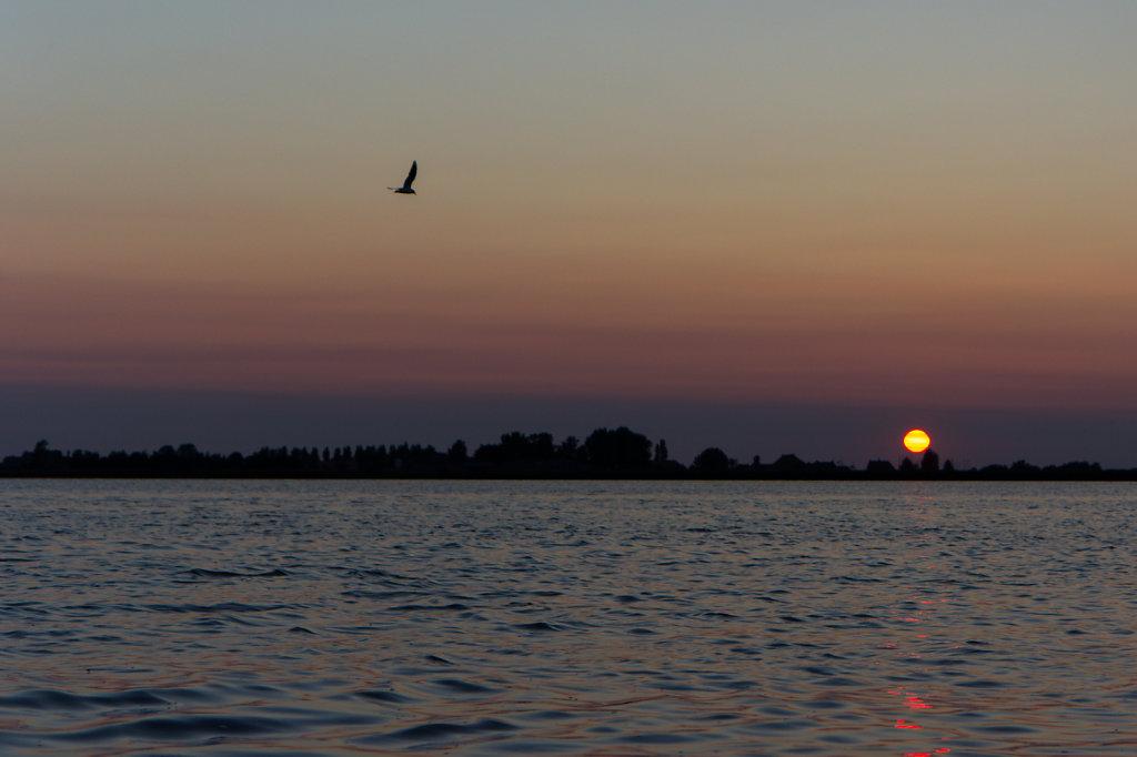 Netherlands-043.jpg
