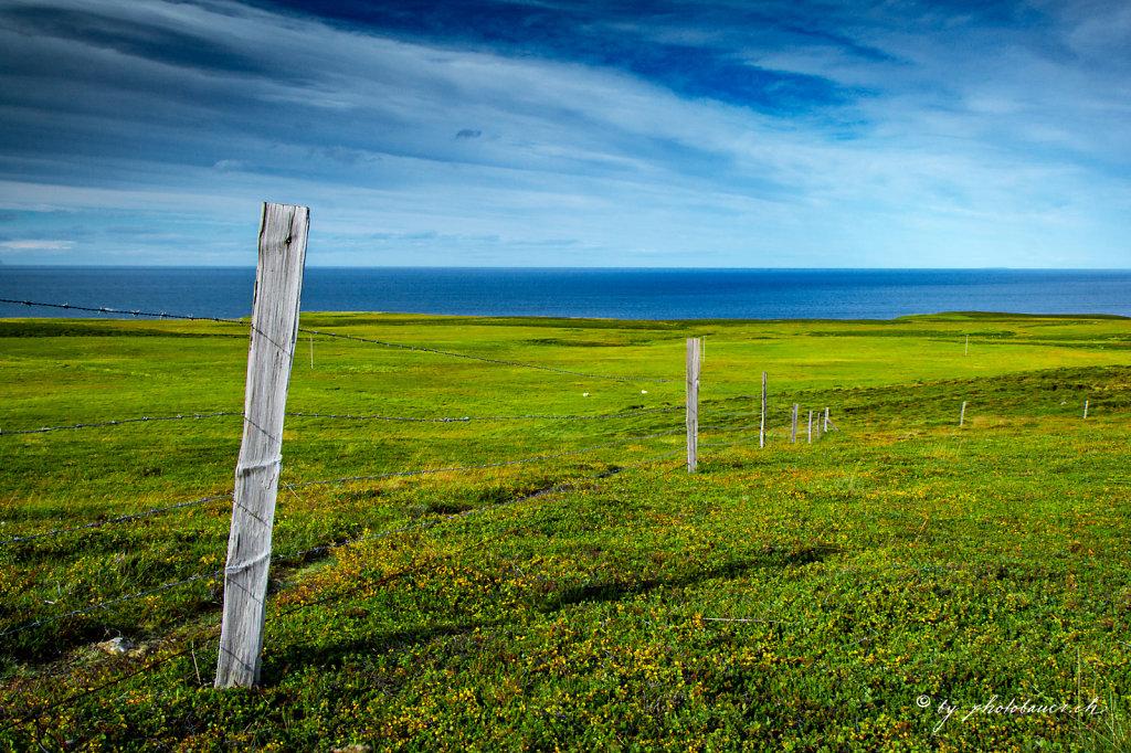 Iceland-054.jpg
